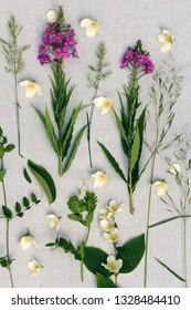 Beautiful wildflowers, artistic background