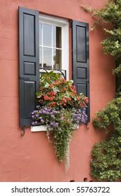 beautiful window box, charleston SC