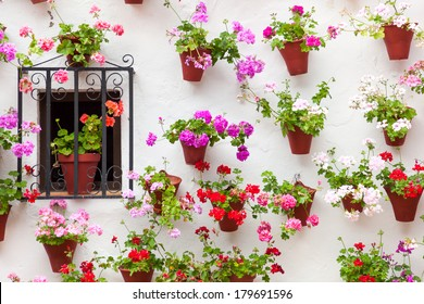 Beautiful Window and Wall Decorated Colorful Flowers - Old European Town, Cordoba, Spain