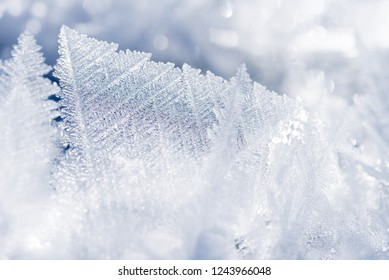 beautiful winter background with frosty ice crystal flakes