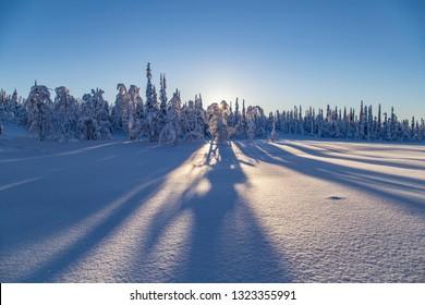 beautiful winter day in finnish lapland