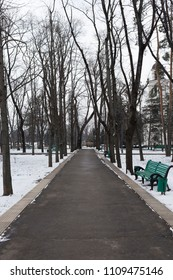Beautiful winter images in the city. Asphalt path in the winter Cathedral Park in Chisinau.