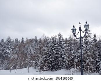 Beautiful winter landscape in Biei, Hokkaido, Japan