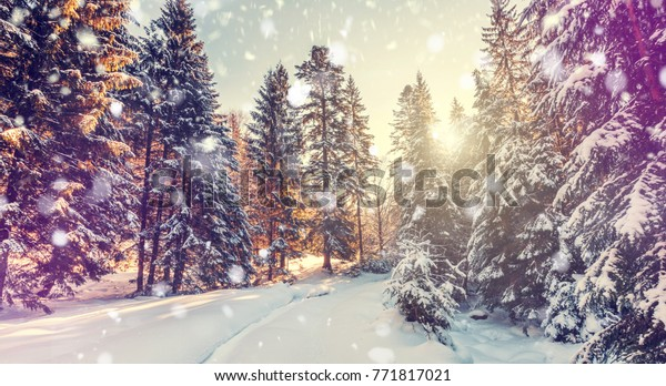 Beautiful winter landscape. Christmas landscape with Falling snow, snowflake. Holiday winter landscape background for Merry Christmas and Happy New Year. Holiday Postcard. retro style instagram filter