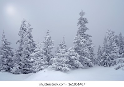 Beautiful winter landscape with fog in the moonlight in the Carpathian mountains, Ukraine, Europe