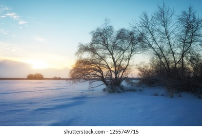Beautiful winter landscape with frozen lake, trees and sunset sky