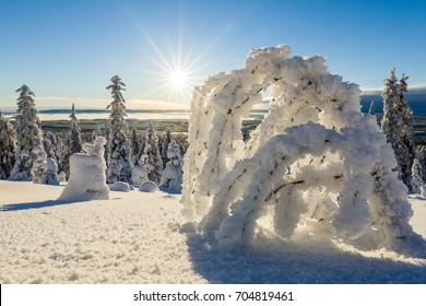 Beautiful Winter landscape in Lapland in Northern Finland