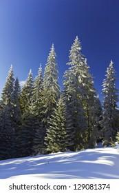 Beautiful winter landscape in a mountain.