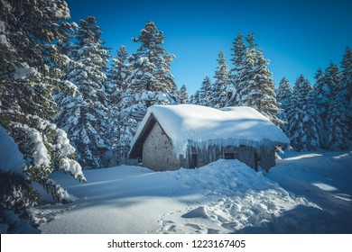 Beautiful winter landscape with snow covered trees. Forest with snow landscape and chalets. Uludag National Park, Bursa, Turkey.