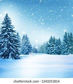 Beautiful winter landscape with snow covered trees.Christmas background