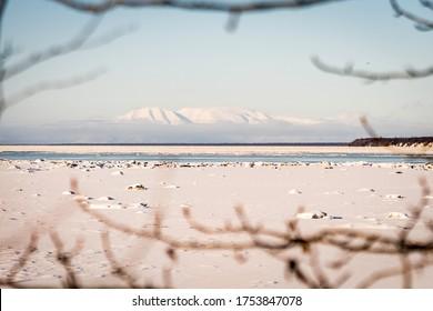 Beautiful winter landscape of a snowy mountain and frozen Knik Arm taken from Earthquake Park while following Tony Knowles Coastal Trail in Anchorage, Alaska. Snow. Branches frame. Near Woronzof Park
