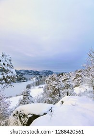 Beautiful winter landscape. Trees and lake in the background. Nature of Larvik, Norway.