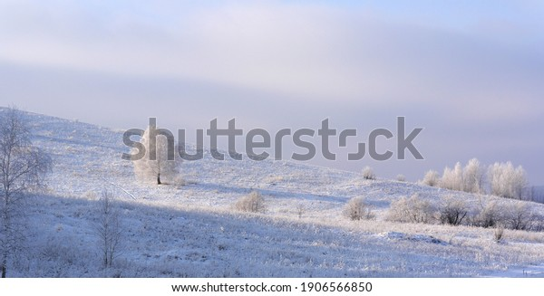 beautiful-winter-landscape-trees-on-600w