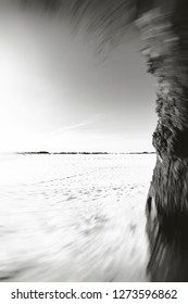 Beautiful winter landscape with white snowy dressed field and tree trunk along the right side, in black and white and motion blur.