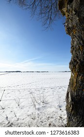 Beautiful winter landscape with white snowy dressed fields towards a clear blue sky, with old rough pattern tree trunk along the right side and branches hanging down.