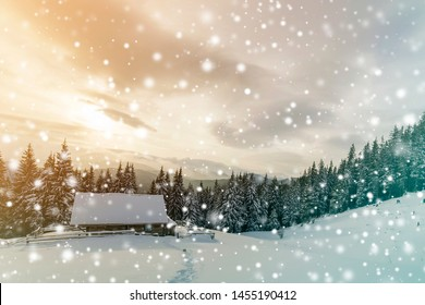 Beautiful winter landscape. Wooden shepherd hut on mountain snowy clearing among pine trees on cloudy sky copy space background. Happy New Year and Merry Christmas card.