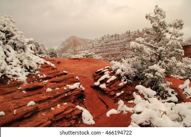 Beautiful Winter Landscape in Zion National Park in the State of Utah