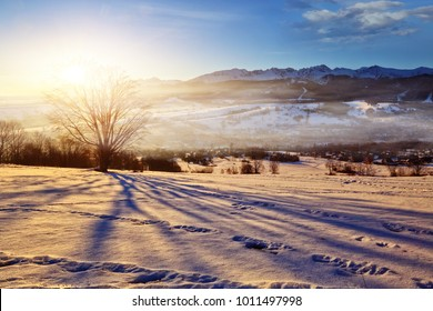 beautiful winter morning in a mountainous land