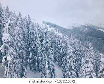Beautiful winter mountain landscape with snow covered fir trees