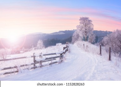 Beautiful winter nature landscape, amazing mountain view of sunset. Scenic image of snowy woodland. Frosty weather. Superb winter wallpapers.
