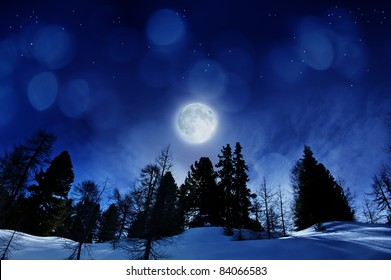 beautiful winter night