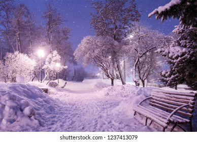 Beautiful winter night landscape of snow covered bench among snowy trees and shining lights during the snowfall. Artistic picture. Beauty world.