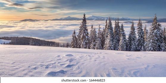 Beautiful winter panorama of the mountains. Mountain valley Pozharska, Carpathian, Ukraine, Europe.