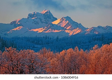 Beautiful Winter Scenery near Smithers, British Columbia, with frostcovered Aspen Forest and spectacular Mountain Range in late afternoon sunlight.