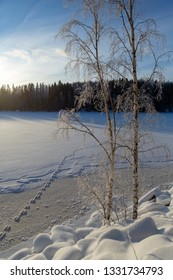 Beautiful winter scenery on a cold morning in Finland. Sunrise, blue sky, snow and footprints on the lake ice.
