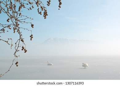 Beautiful winter scenery in the snowy lake Orestiada in Kastoria ,Greece