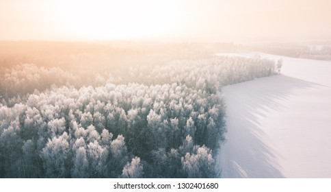 Beautiful winter scenery with sunrise over the tree tops of pine forest. Sunlight shines through the mist creating stunning aerial panorama. Moody winter day's landscape with warm sunlight.