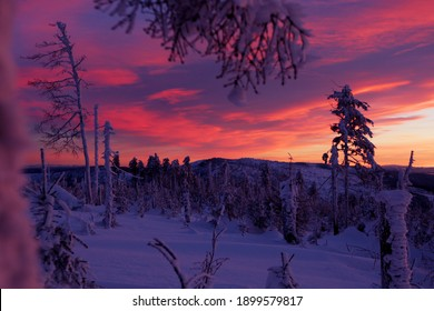 A beautiful winter in the Silesian Beskids. Malinowska Skala - a tropical peak in the main ridge of the Barania Gora range in the Silesian Beskids in a beautiful winter sunset