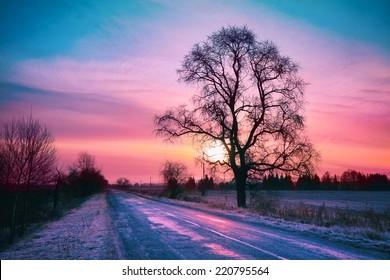 Beautiful winter sunrise over road