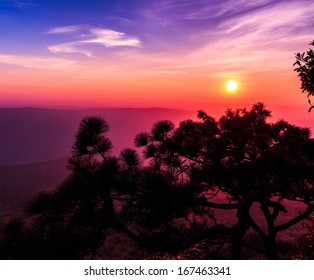 Beautiful winter sunset at cliff in the nature, with silhouettes of tree at  (Lom sak  cliff) Phukradung National Park,Asia Thailand