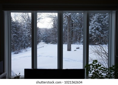 Beautiful winter wonderland outside of the vertical windows