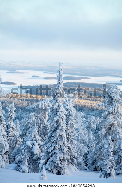 beautiful-wintry-view-over-snow-600w-186