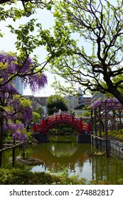 Beautiful wisteria hang over the water near a traditional Edo-style bridge in Tokyo