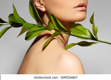 Beautiful woman applies Organic Cosmetic. Spa and Wellness. Model with Clean Skin. Healthcare. Picture with leaf on grey background