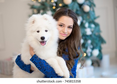 Beautiful woman in blue dress with white siberian husky on christmas tree background.