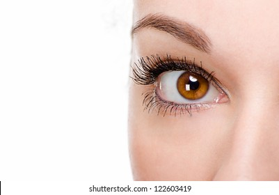 Beautiful woman eye with make-up with white background