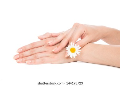 Beautiful woman hands french manicure with camomile daisy flower isolated on a white background