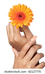 Beautiful woman hands with perfect manicure holding a flower, closeup shot, isolated on white