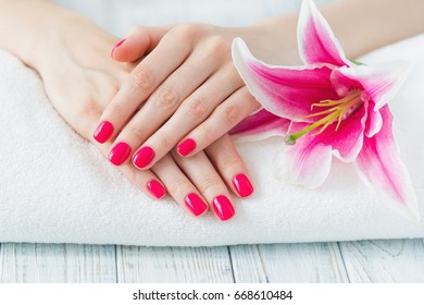 Beautiful woman hands with pink manicure and lily, spa beauty treatment