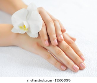 Beautiful woman hands with white orchid flower