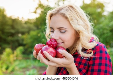 Beautiful woman harvesting apples, eating them
