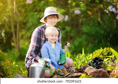 Beautiful woman and her cute son planting seedlings in bed in the domestic garden at summer day. Garden tools, gloves and watering can outdoors. Gardening activity with little kid and family