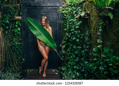 Beautiful woman in the jungle. Resort or hotel with tropic trees and plants. Woman with gigant leaf. Laughter girl on vacation
