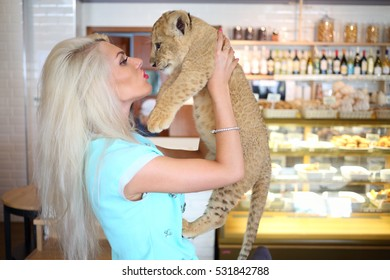 Beautiful woman kisses funny little calf of lion near showcase in cafe