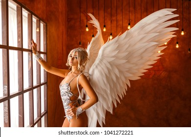 beautiful woman in lingerie with angel wings
