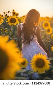 Beautiful woman with long hair in white dress in a field of sunflowers in the summer in the sunlight